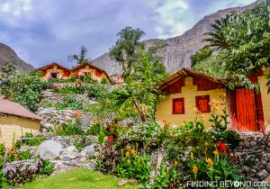 Tropical paradise at the bottom of Colca Canyon, Peru