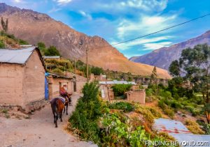 Local man on horse back leading the way inside Colca Canyon, Peru