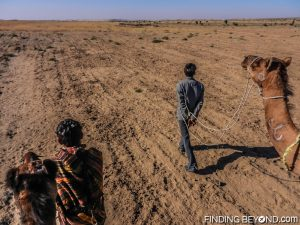 Our Thar Desert guides leading the way