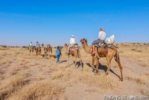 Camel safari in India's Thar Desert