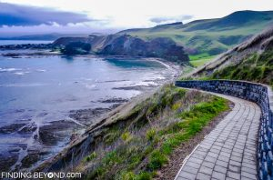 Kaikoura peninsular walk, New Zealand.
