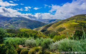 Douro Valley view from our room. Portugal. Portugal Highlights for a 2 Week Itinerary.