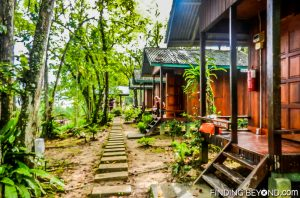 Civet Wing huts. Discovering Jungle Wildlife Along Borneo's Kinabatangan River.