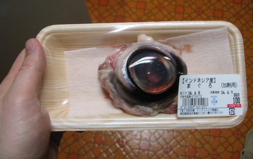 Image result for tuna eyeball