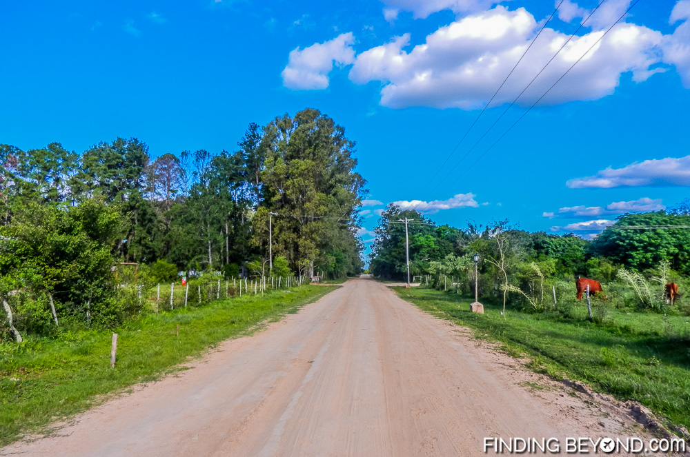 Typical road in Colonia Carlos Pellegrini. Our Ibera Wetlands Argentina Wildlife Adventure.