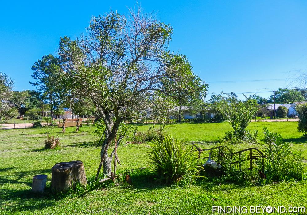 Guesthouse garden at Colonia Carlos Pellegrini. Our Ibera Wetlands Argentina Wildlife Adventure.