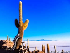 Cactus hugging at Salar de Uyuni, Bolivia. Tips on How to Save Money for Travel.
