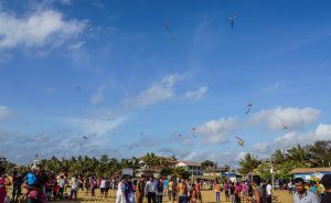 Kites on the beach. Things to do in Negombo Beach? Don't Expect Much.