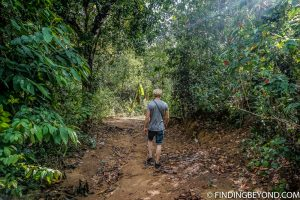 The jungle pathway to our accommodation. Things to do in Ella, the beautiful Sri Lanka Hill country base town. Including the best walks, restaurant recommendations and accommodation.