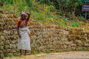 Local lady carrying a sack of tea leaves. Mountains in Sri Lanka - Little Adams Peak: A Photo Journey.