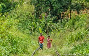 Another local family using the jungle covered train track. Hiking in Sri Lanka is a must when visiting the island and Ella Rock is a highland highlight. We documented our climb to the top with some wonderful photos.