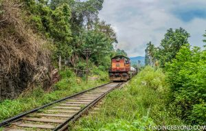Jumping out of the way for an incoming train. Hiking in Sri Lanka is a must when visiting the island and Ella Rock is a highland highlight. We documented our climb to the top with some wonderful photos.