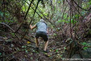 Trying to navigate the nature trail. With difficulty! Top 10 Things to do in Chiang Dao.