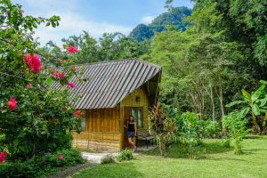 Our bamboo hut at Chiang Dao Nest 2. Top 10 Things to do in Chiang Dao.