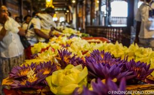 Offerings at the Temple of the Tooth in Kandy Sri Lanka