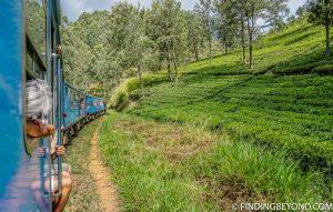 On the Kandy to Ella Train