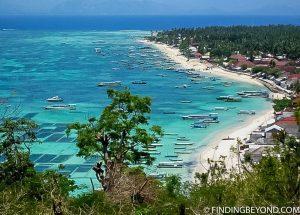Nusa Lembongan Beach coral