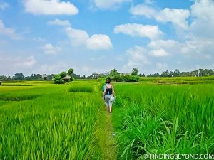 Walking through rice fields in Ubud