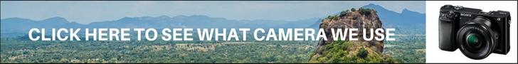 Camera Leaderboard