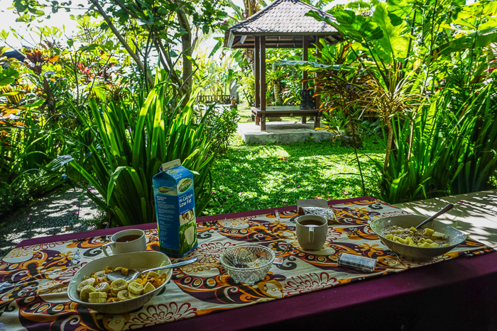 our cost of living in ubud for a month bali budget-3