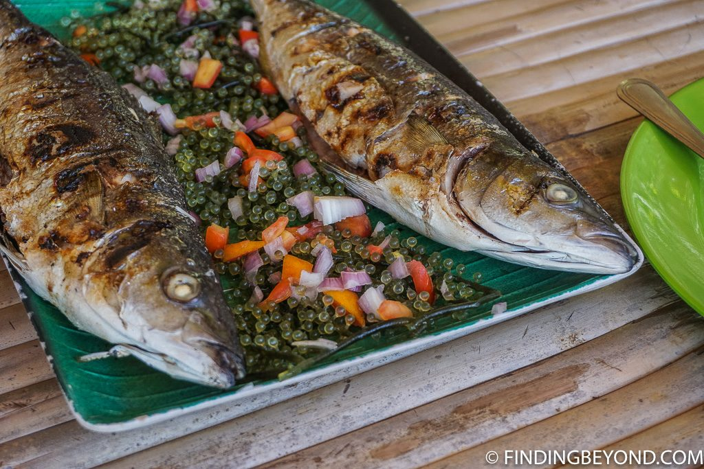 Grilled fish on the the Best Coron Itinerary For Coron Island Hopping in Palawan