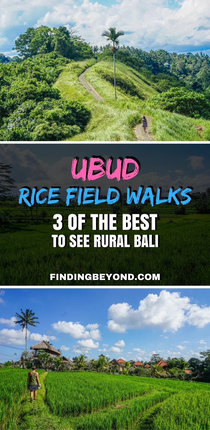 For something free to do in Ubud, Bali, go on an Ubud rice fields walk. In this post, we share our 3 favourite easy Ubud walks to see rural Bali.