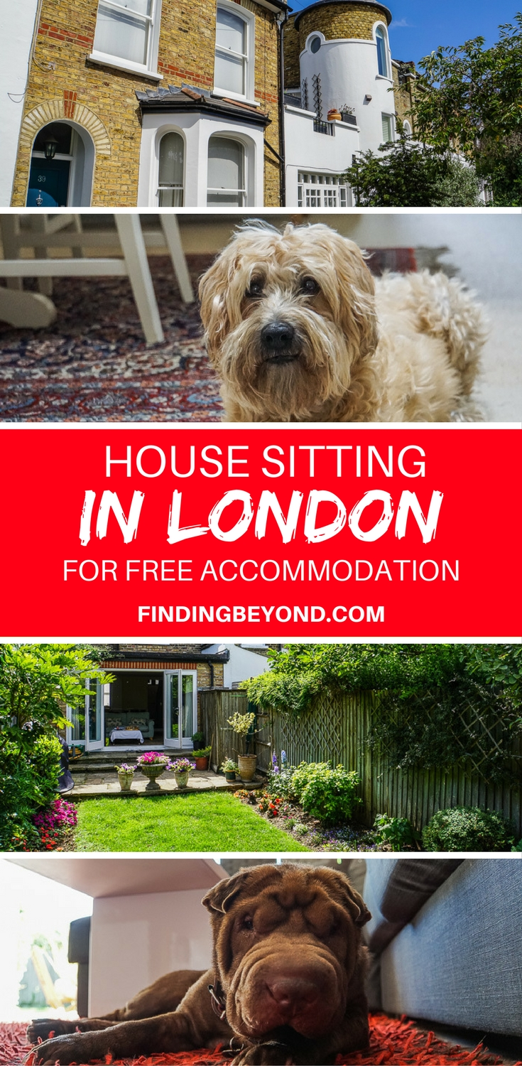 Read about our experience house sitting in London to gain free accommodation for one month. London house sitting can save you thousands of pounds.
