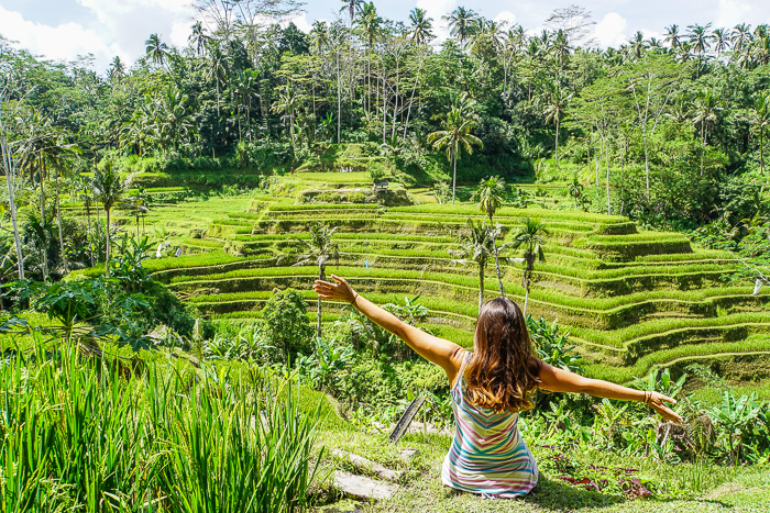 Our favourite day trips from ubud in bali finding beyond for Tegalalang rice terrace ubud