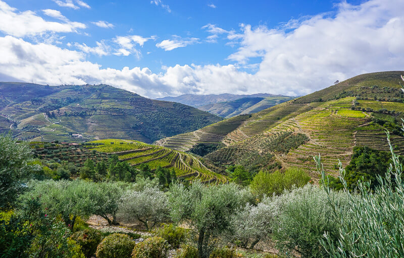 douro valley view portugal