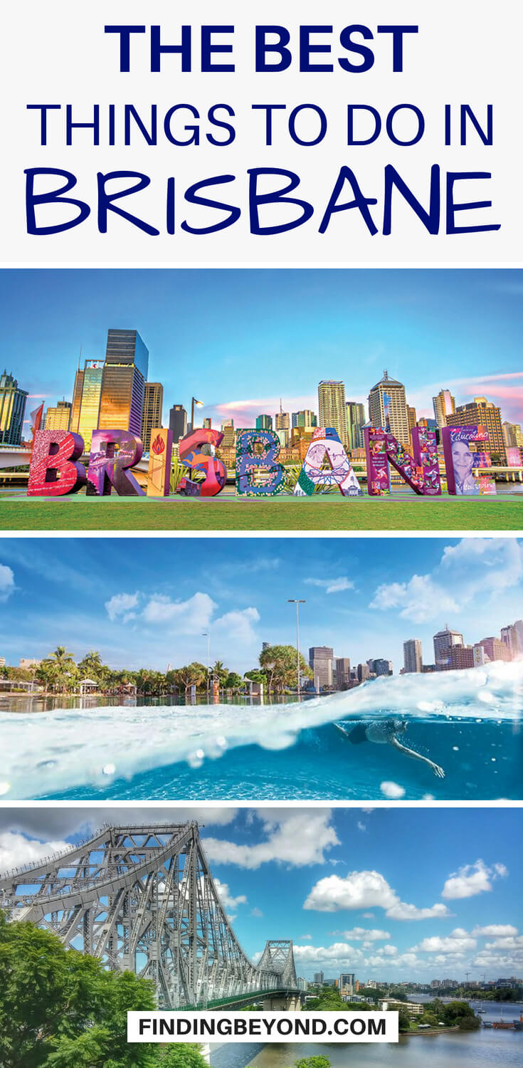 Looking for what to do in Brisbane? Look no further than this list of things to do in Brisbane. Wildlife, adventure and culture, we've got you covered.