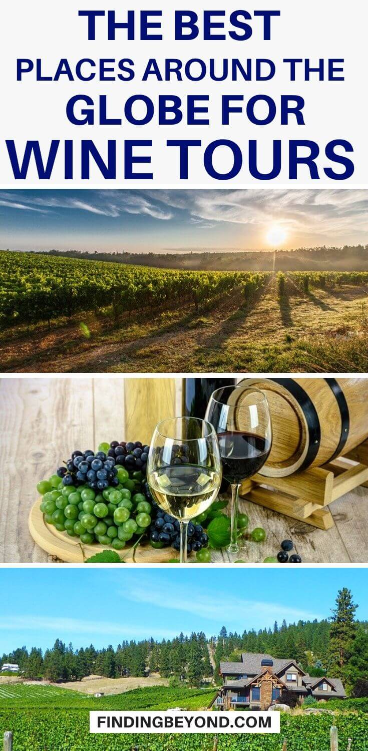 If you are a wine-lover or a newbie in the winery and you are planning the perfect wine tour, you must consider at visiting the following countries!