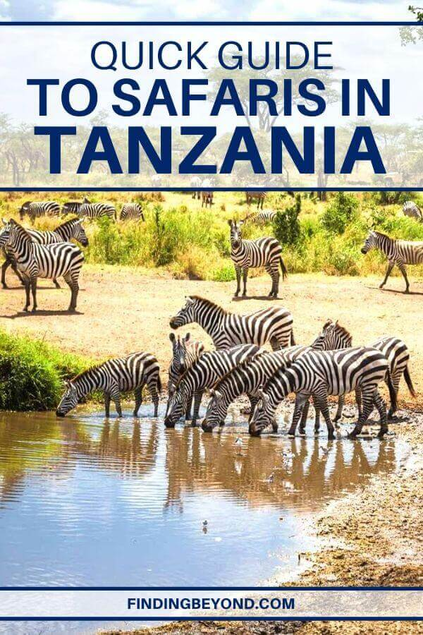 In order to get the most out of your Tanzania safari holiday, go through this ultimate safari guide and experience an adventure of a lifetime.
