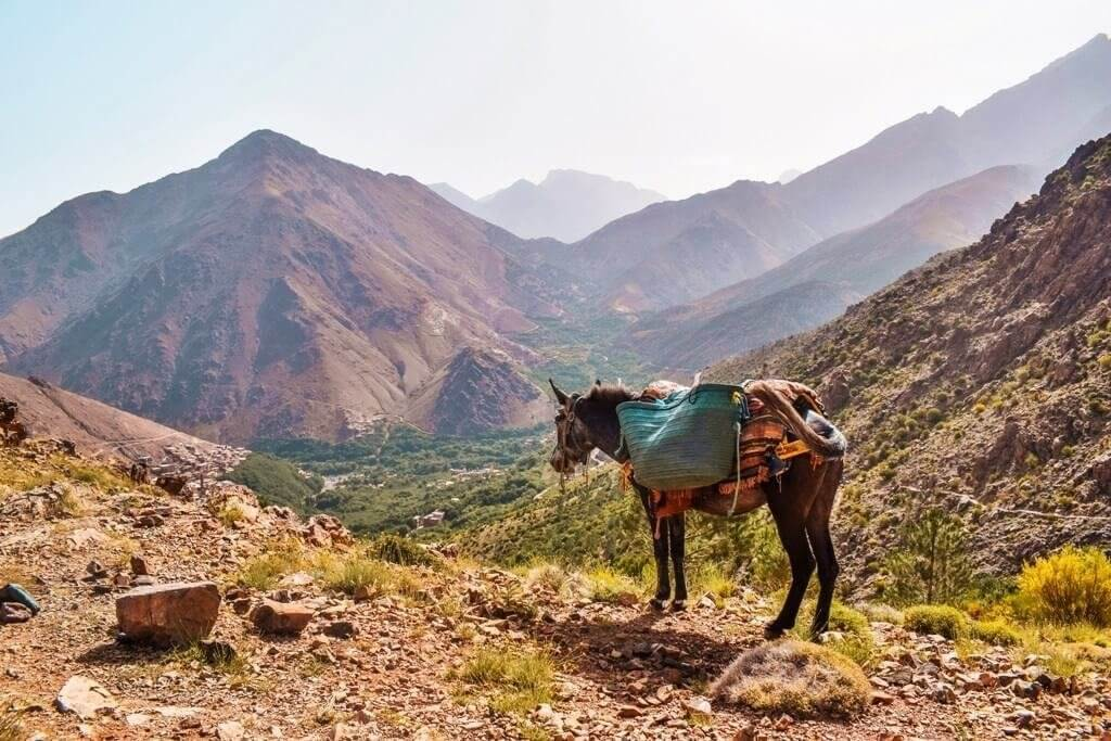 hiking-atlas-mountains-1