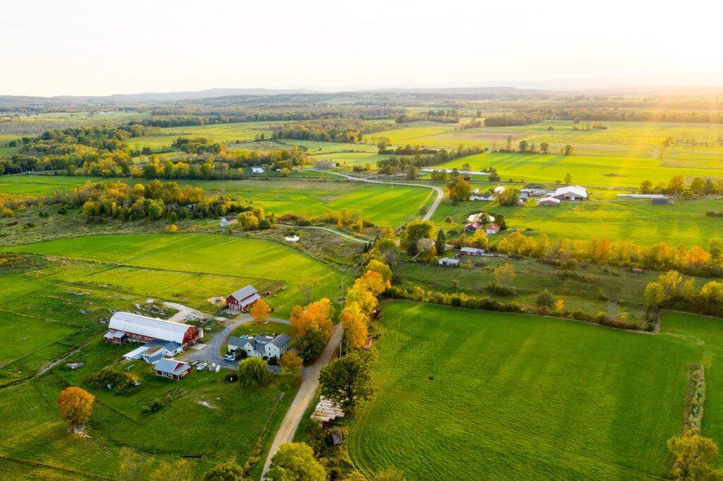 Blue Ledge Farm