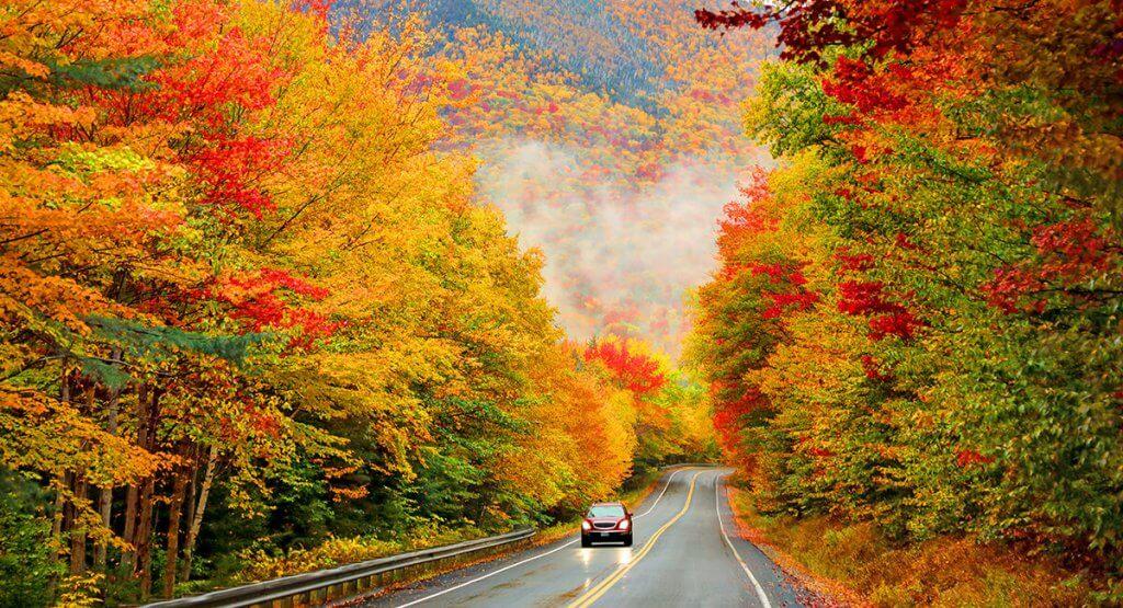 Fall Foliage Road Trip
